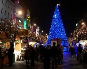 rejser i julen 2016